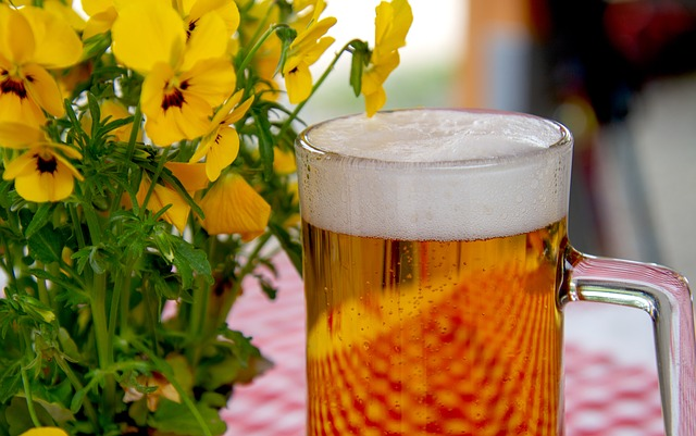 Consume cerveza de un modo saludable